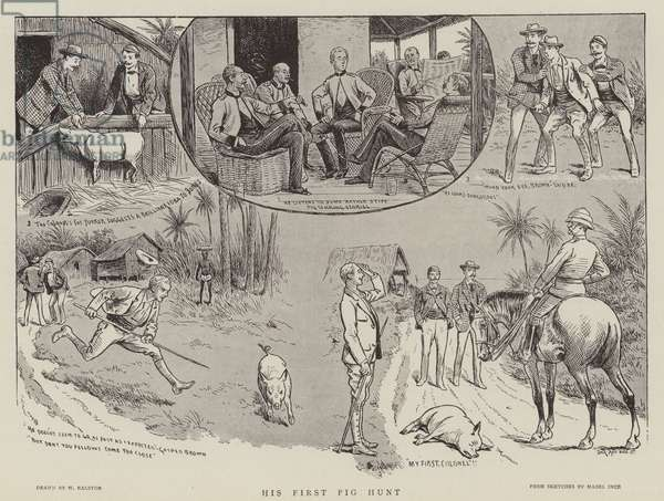 His first pig hunt (engraving)