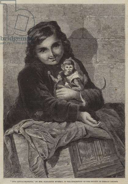 Two Little Monkeys (engraving)