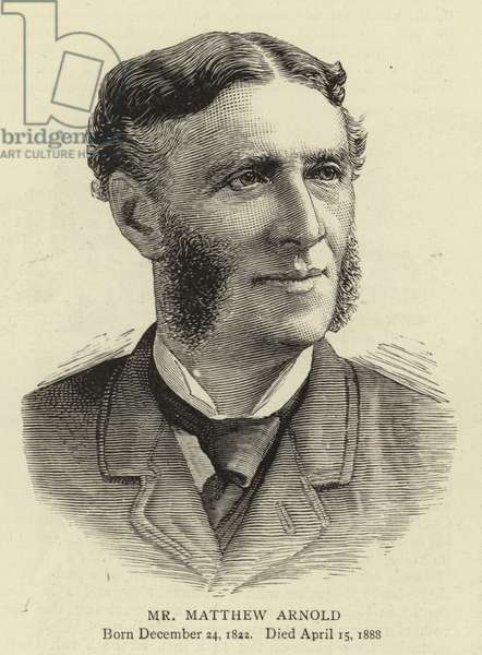 Mr Matthew Arnold (engraving)