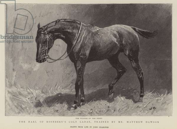 The winner of the Derby, The Earl of Rosebery's Colt Ladas, trained by Mr Matthew Dawson (engraving)