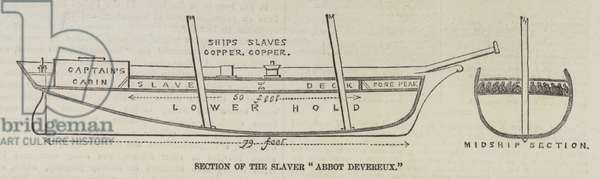 "Section of the Slaver ""Abbot Devereux"" (engraving)"