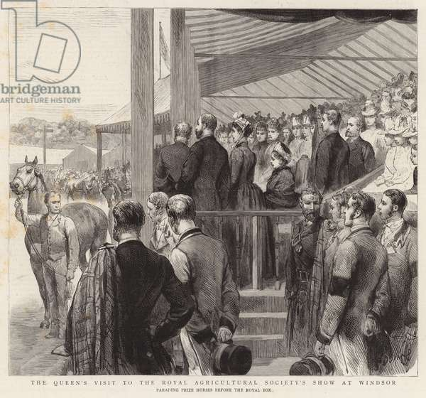 The Queen's Visit to the Royal Agricultural Society's Show at Windsor (engraving)