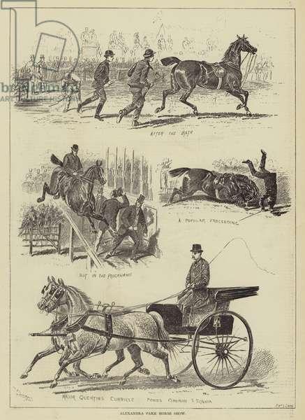 Alexandra Park Horse Show (engraving)