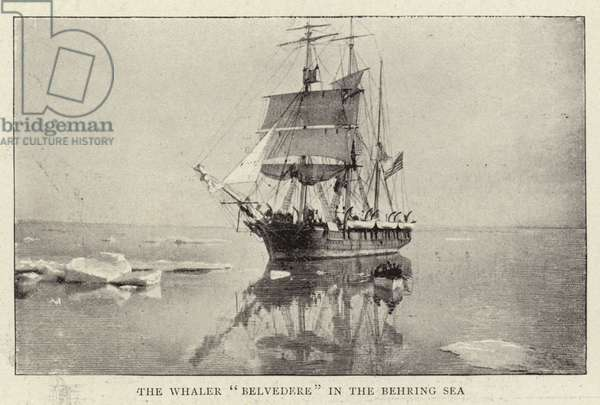 """The Whaler """"Belvedere"""" in the Behring Sea (b/w photo)"""