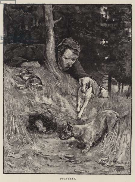 Poachers (engraving)