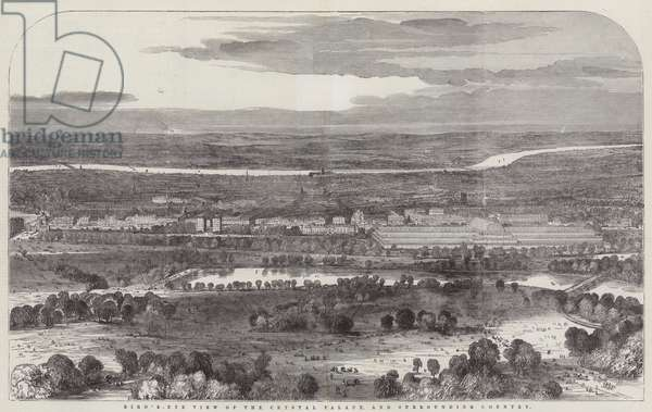 Bird's-Eye View of the Crystal Palace (engraving)
