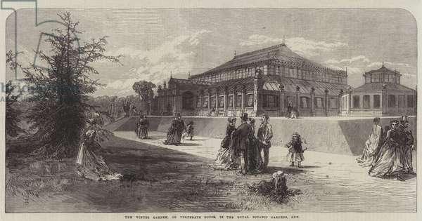 The Winter Garden, or Temperate House, in the Royal Botanic Gardens, Kew (engraving)
