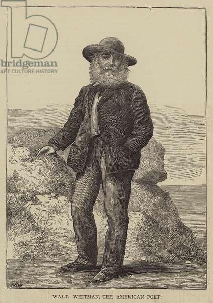 Walt Whitman, the American Poet (engraving)