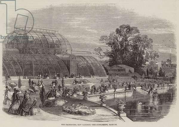 The Palmhouse, Kew Gardens (engraving)