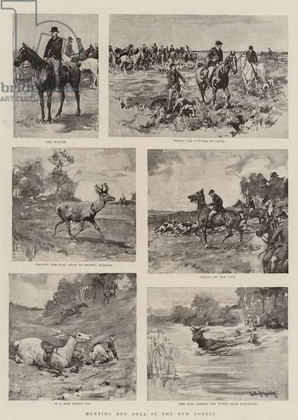 Hunting Red Deer in the New Forest (litho)