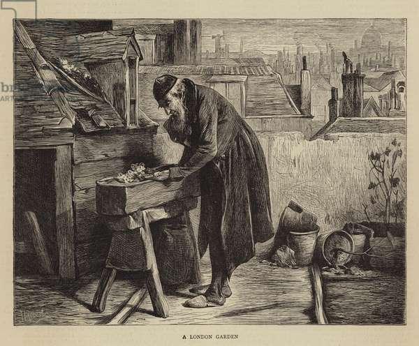 A London Garden (engraving)