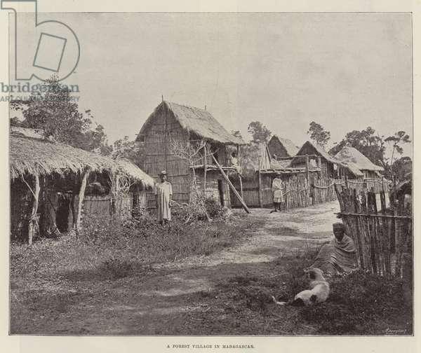A Forest Village in Madagascar (b/w photo)