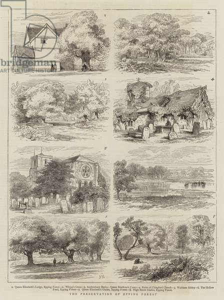 The Preservation of Epping Forest (engraving)