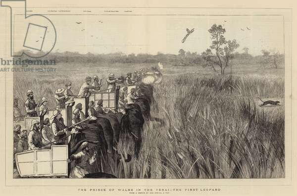 The Prince of Wales in the Terai, the First Leopard (engraving)