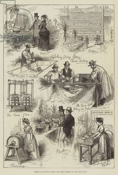 Cheese and Butter Making and Prize Cheeses at the Dairy Show (engraving)
