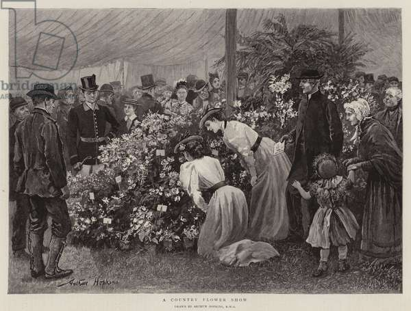 A Country Flower Show (engraving)