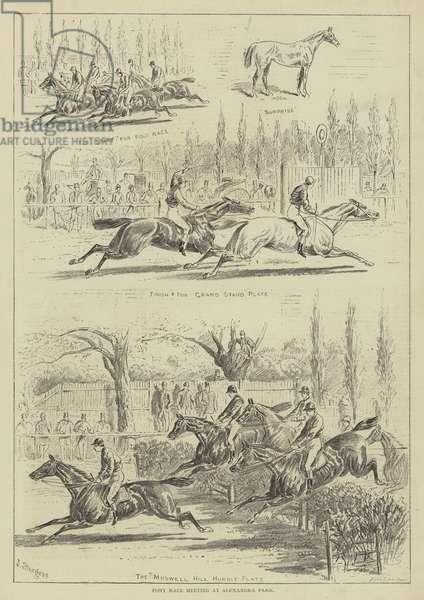 Pony Race Meeting at Alexandra Park (engraving)