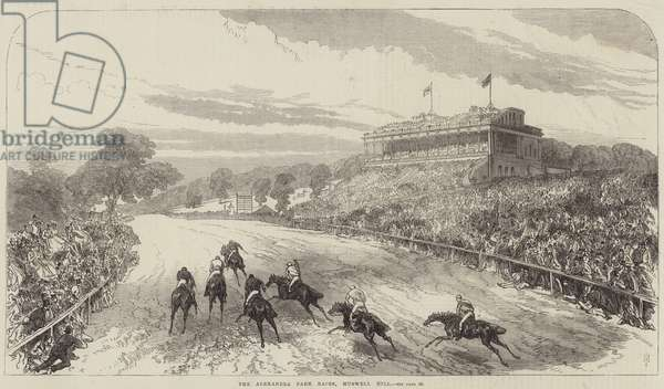 The Alexandra Park Races, Muswell Hill (engraving)