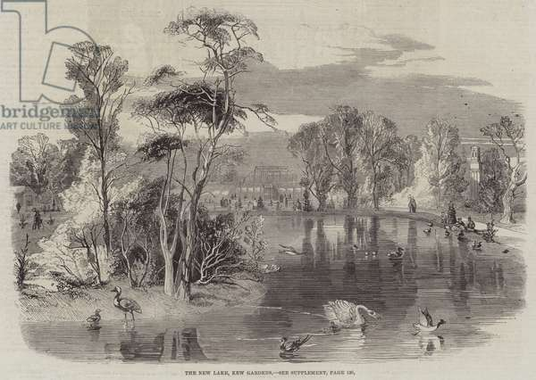 The New Lake, Kew Gardens (engraving)