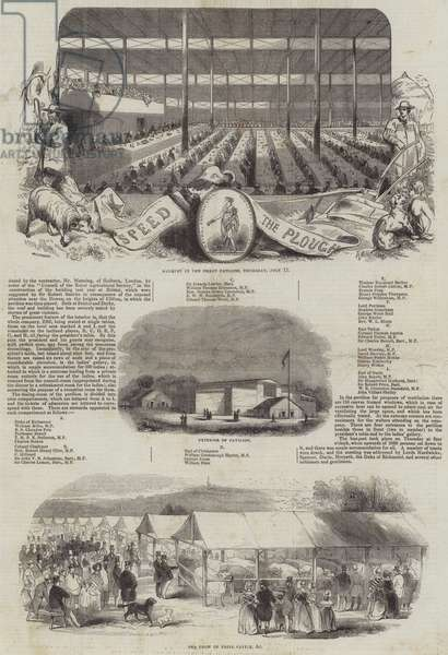 The Fifth Anniversary of the Royal Agricultural Society of England (engraving)