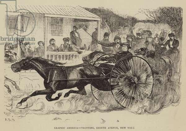 Graphic America, Trotting, Eighth Avenue, New York (engraving)