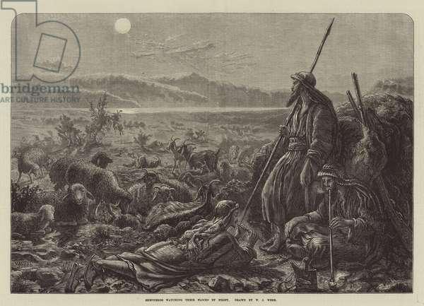 Shepherds watching their Flocks by Night (engraving)