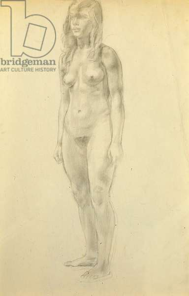 Female nude standing full length, three-quarter view, arms to the sides (pencil on paper)