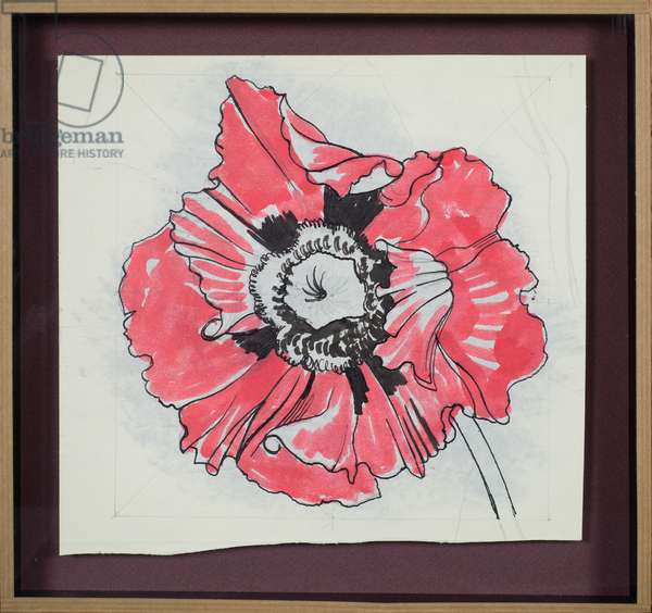 Study of a poppy, c.1948 (w/c & pen & ink over pencil on paper)