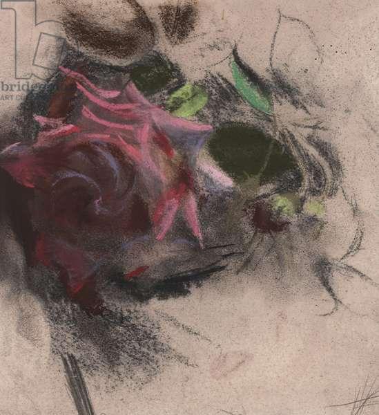 Burgundy Hybrid Tea Rose (pastel on prepared paper)