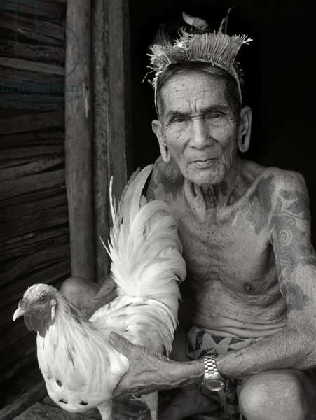 Tuai-Rumah Along with his fighting cockerel (b/w photo)