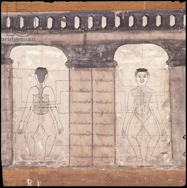 Depiction of massage points on the human body (wall painting)