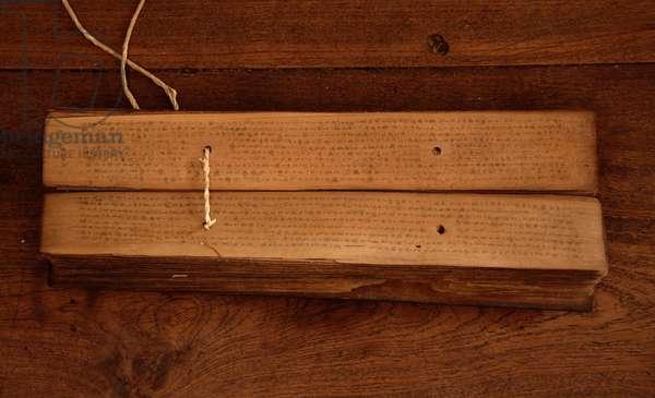 Ayurvedic palm leaf manuscript (photo)