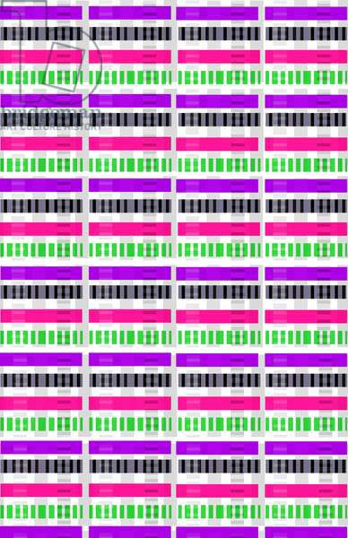 Stripe & Check, 2014 (digital media)