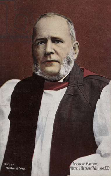 Bishop of Bangor, Watkin Herbert Williams, DD (photo)
