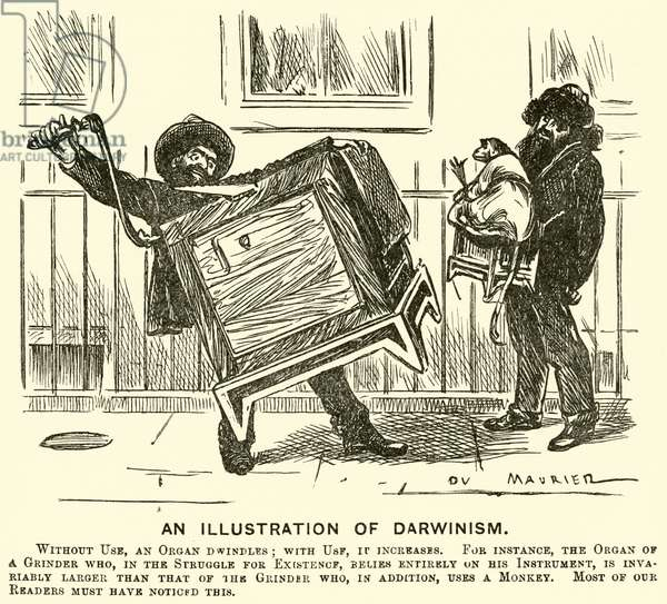 An Illustration of Darwinism (engraving)