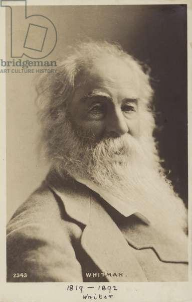Walt Whitman (1819-1893), American poet (b/w photo)