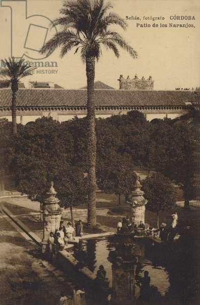 Patio de los Naranjos, Mosque-Cathedral of Cordoba, Spain (b/w photo)