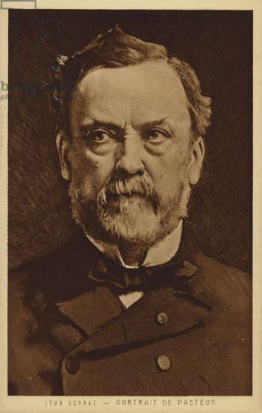 Louis Pasteur (1822-1895), French chemist and microbiologist (litho)