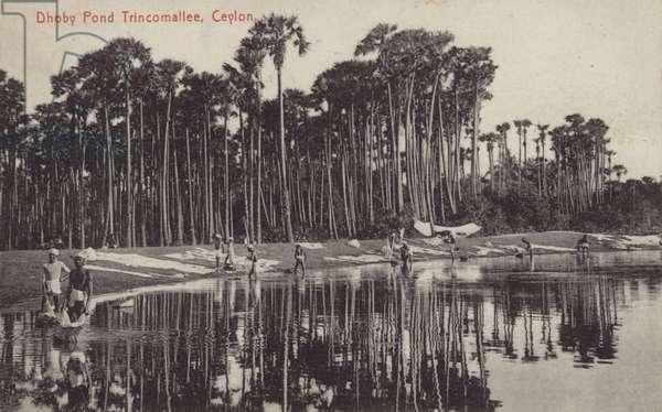 Dhoby Pond Tricomallee, Ceylon (b/w photo)