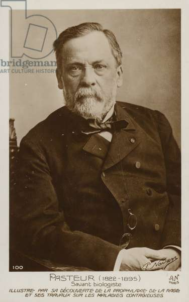 Louis Pasteur (1822-1895), French chemist and microbiologist (b/w photo)