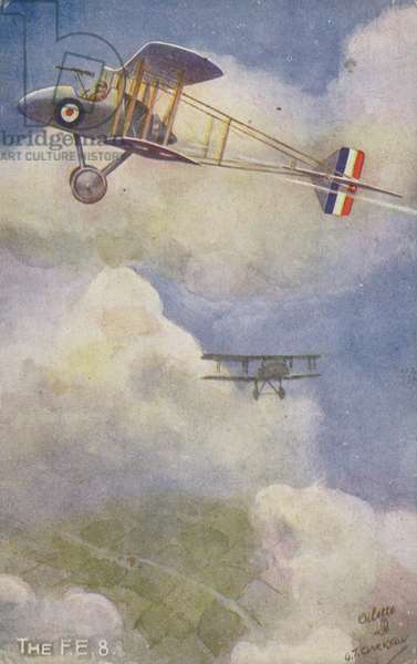 Royal Aircraft Factory FE 8 fighter plane (colour litho)