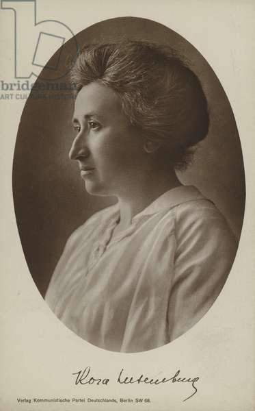 Rosa Luxemburg, German philosopher and socialist revolutionary (b/w photo)