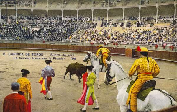 Bull fight in Spain, early 20th century (photo)