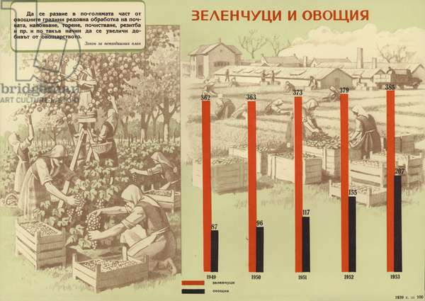 Bulgarian communist propaganda showing the increase in the production of fruit and vegetables during the first five year plan (1948-1953) (colour litho)