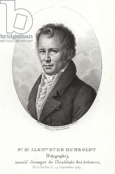 Alexander von Humboldt (engraving)