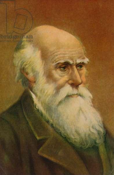 Charles Darwin (colour litho)