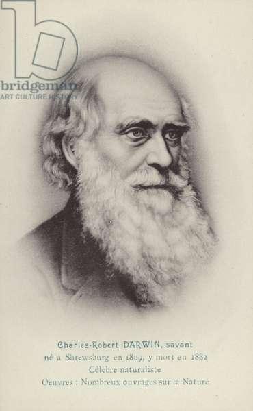 Charles Darwin (1809-1882), English naturalist (litho)