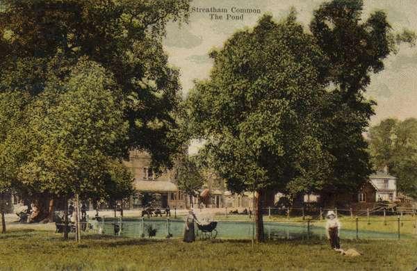 The pond on Streatham Common (photo)