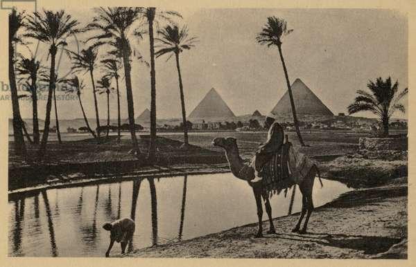 The Pyramids of Giza, Egypt (b/w photo)