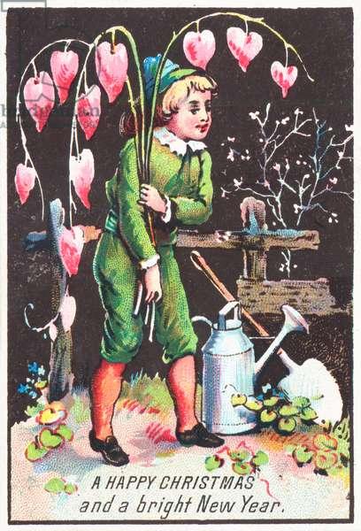 Boy carrying 'Bleeding Heart' flowers, Christmas Card (chromolitho)
